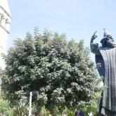 La statue de Grégoire de Nin